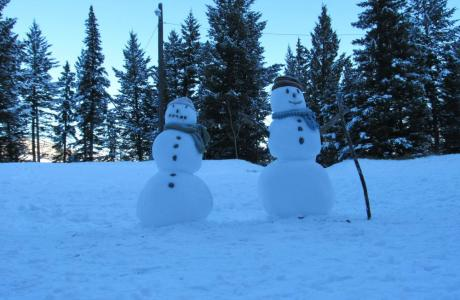 Snow Fun! - Camp Chief Hector, Canmore, Canadian Rockies