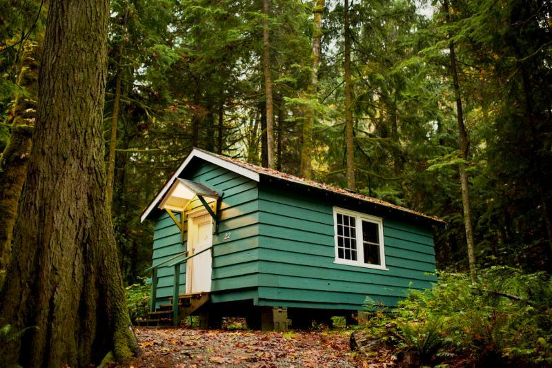 Forest Cabin accommodation
