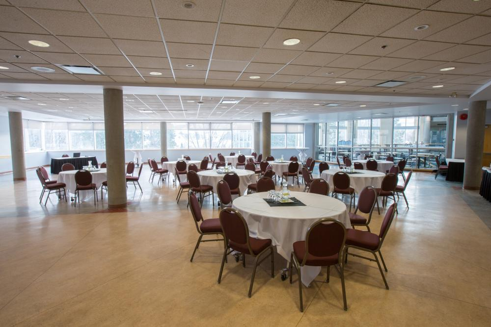 Terrace Room - Ideal for meetings, special events, etc. Natural light.